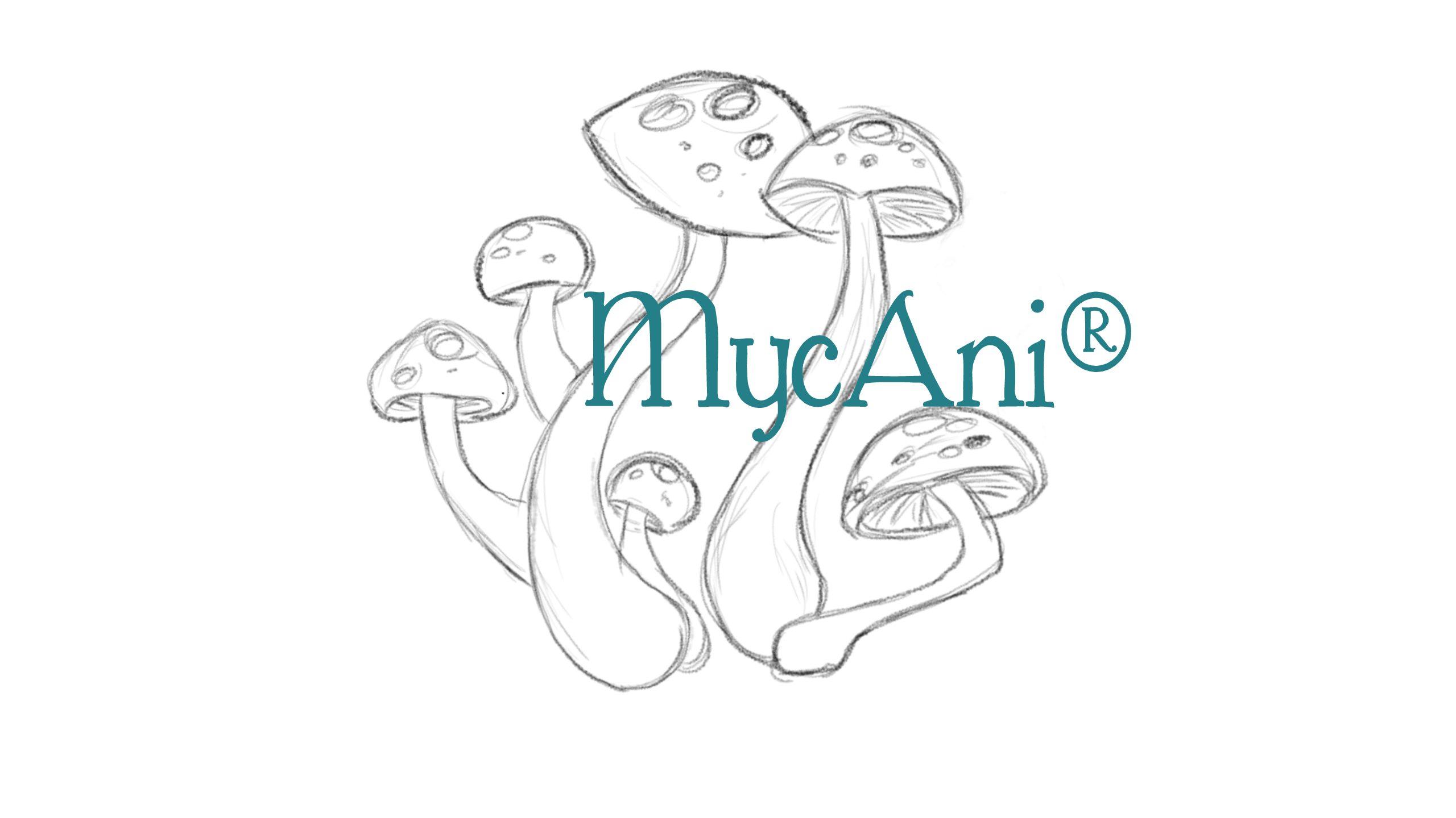 MycAni
