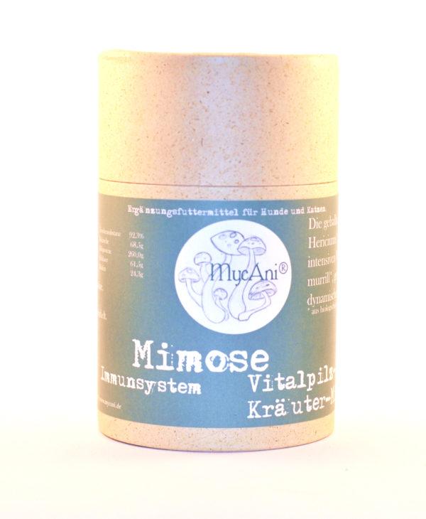 Mimose von MycAni