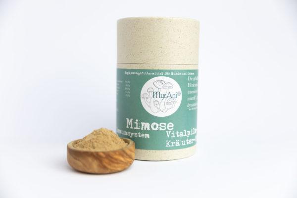 MycAni Mimose